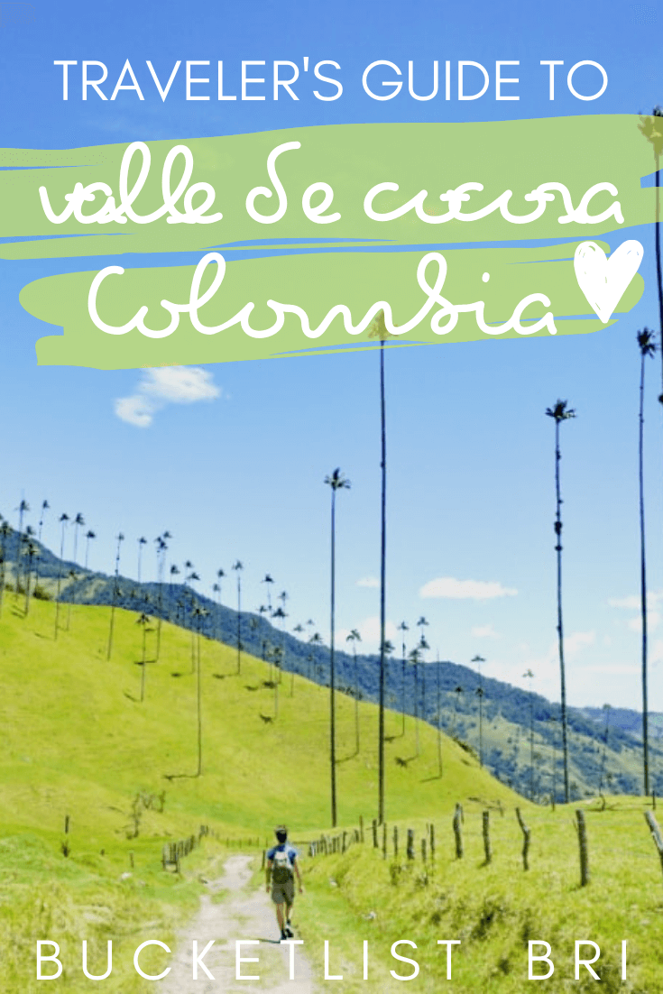 Hiking the Valle de Cocora near Salento, Colombia: Ultimate Travel Guide // Bucketlist Bri // #colombia #travel #valledecocora #palmtrees
