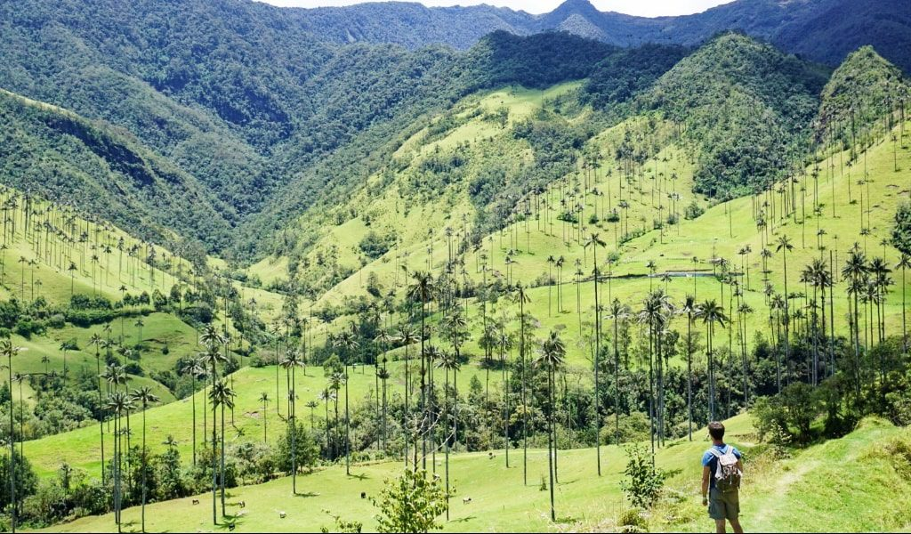 3 Days in Salento, Colombia | Bucketlist Bri