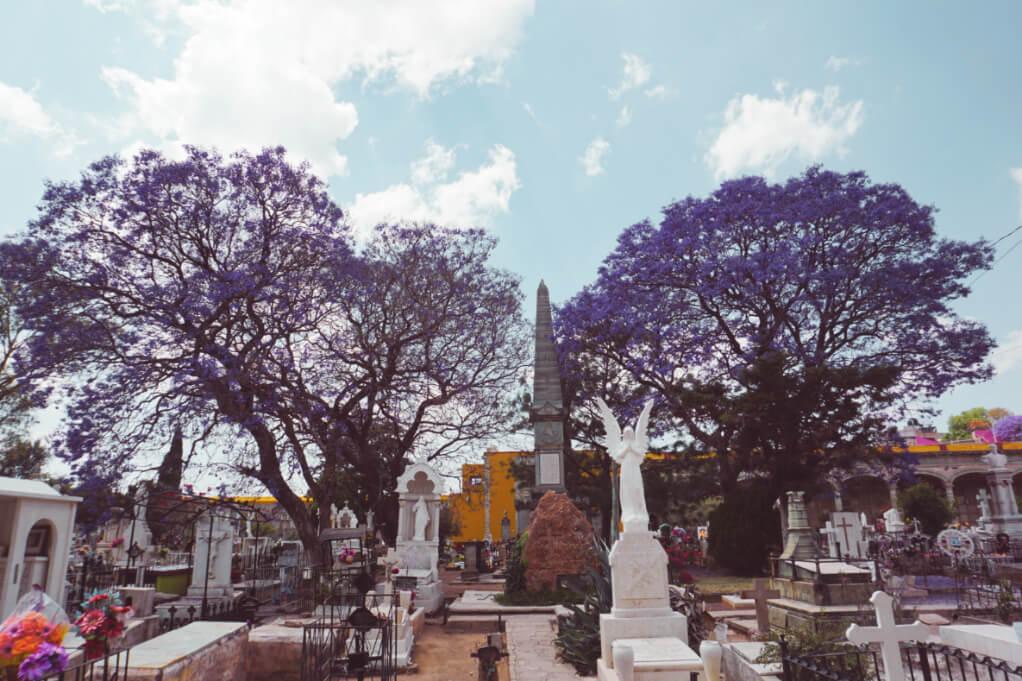 cemetery in Guanajuato City