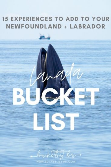 Newfoundland Bucket List 15 things to do in Newfoundland and Labrador to fuel your wanderlust. #newfoundlandlabrador #canada #puffins #traveldestinations #travelcanada #bucketlist Bucketlist Bri