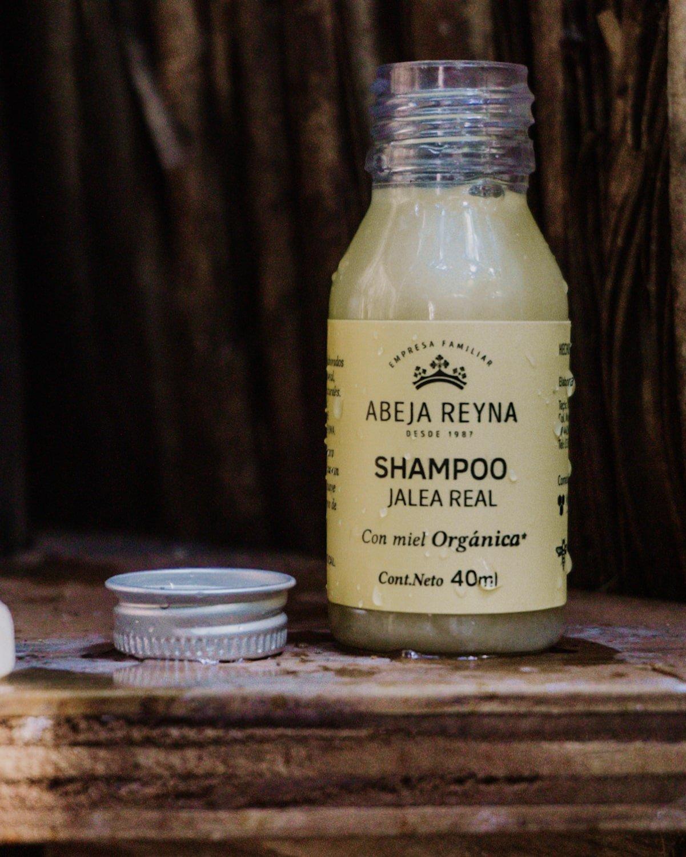 Organic | Biodegradable soap and shampoo @ Aldea Bamboo