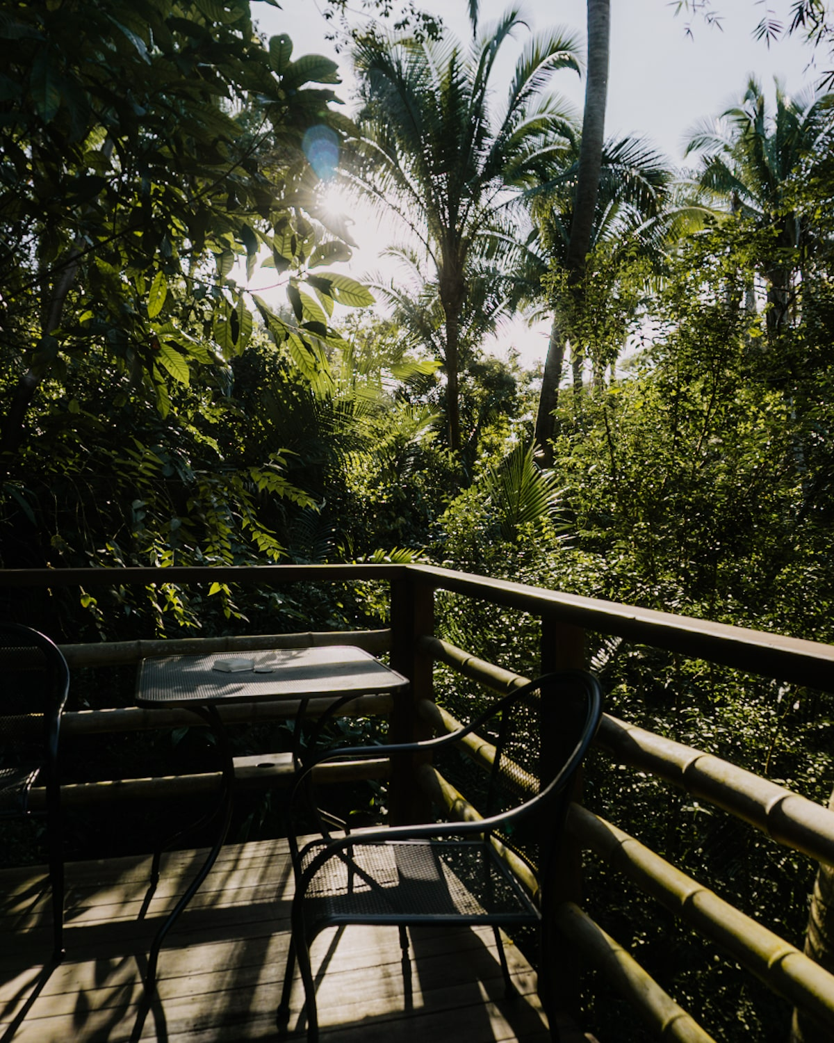 Tropical jungle views @ Aldea Bamboo in San Pancho Mexico | Bucketlist Bri