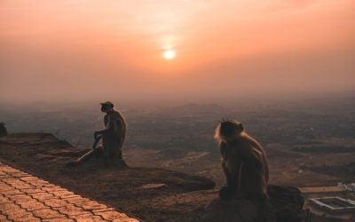 1 Day Itinerary for Pushkar: India's Hippiest Holy City