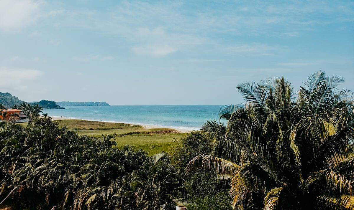 san pancho beach views with palm trees