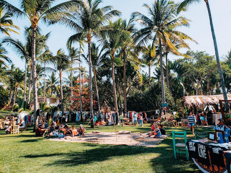 Sayulita Mexico palm trees