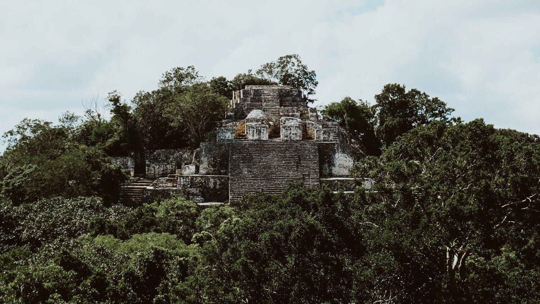 calakmul mayan ruins pyramid in campeche, mexico