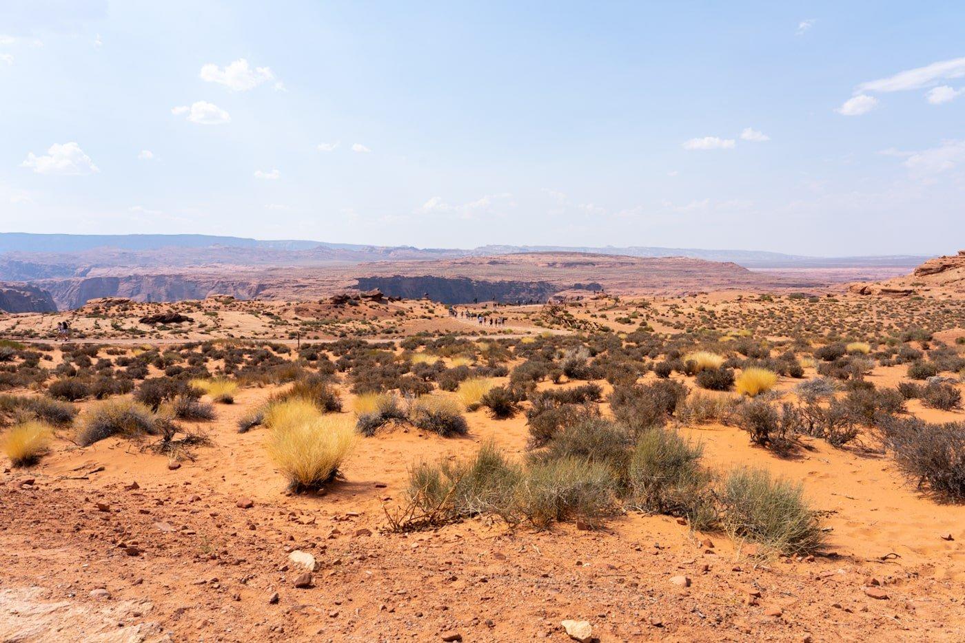 Horseshoe Bend hike