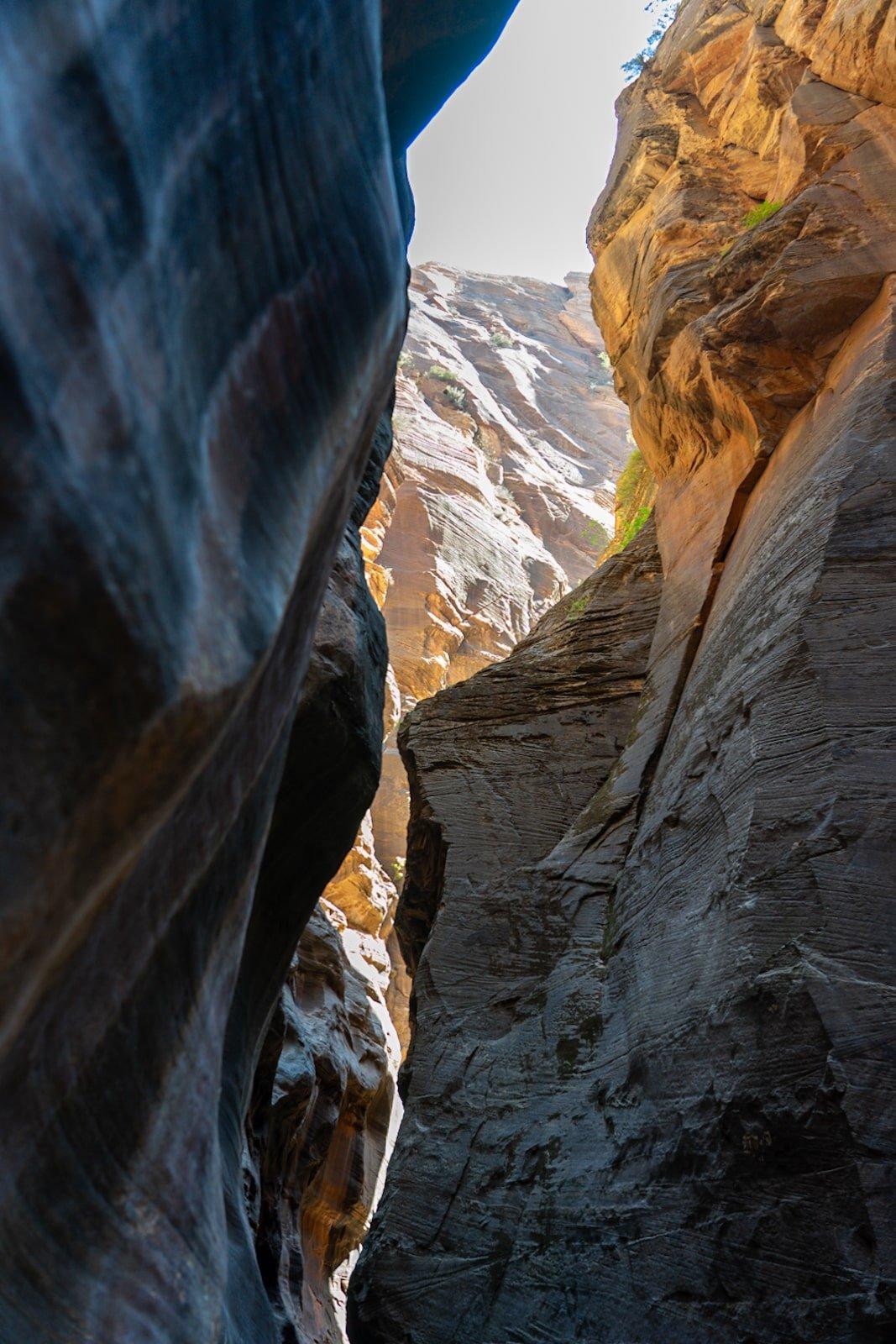 The beautiful Zion Narrows canyon walls