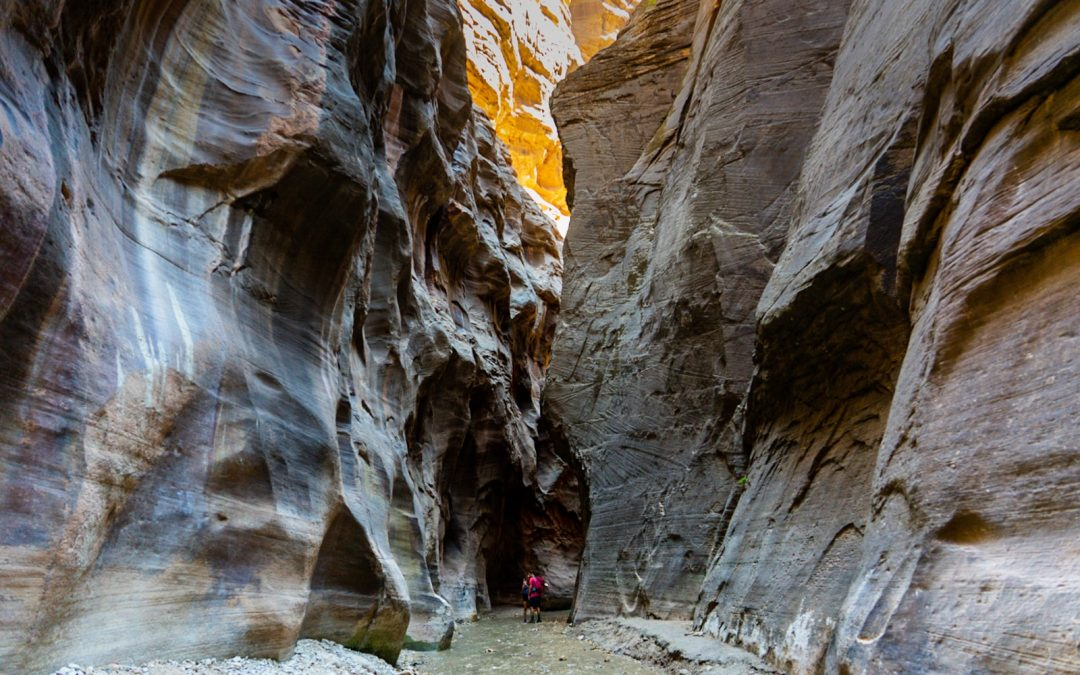 A Beginner's Guide to Hiking the Narrows in Zion