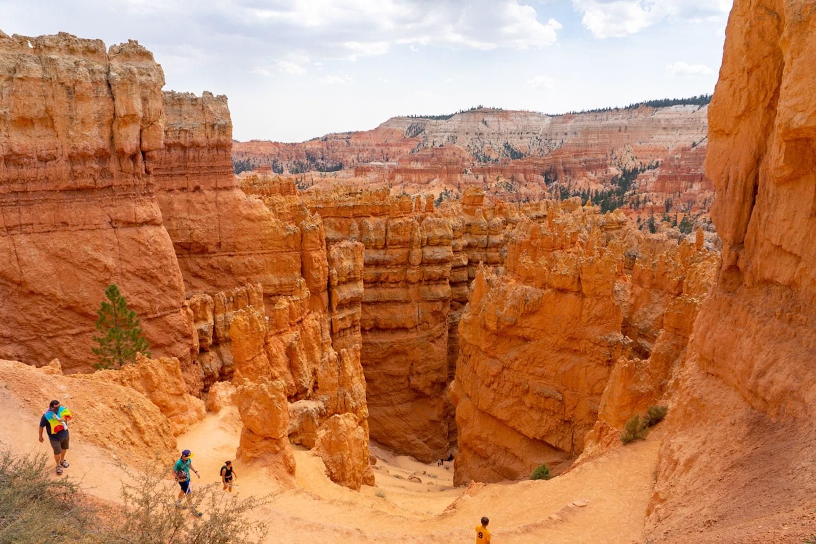 hiking wall street trail in bryce canyon