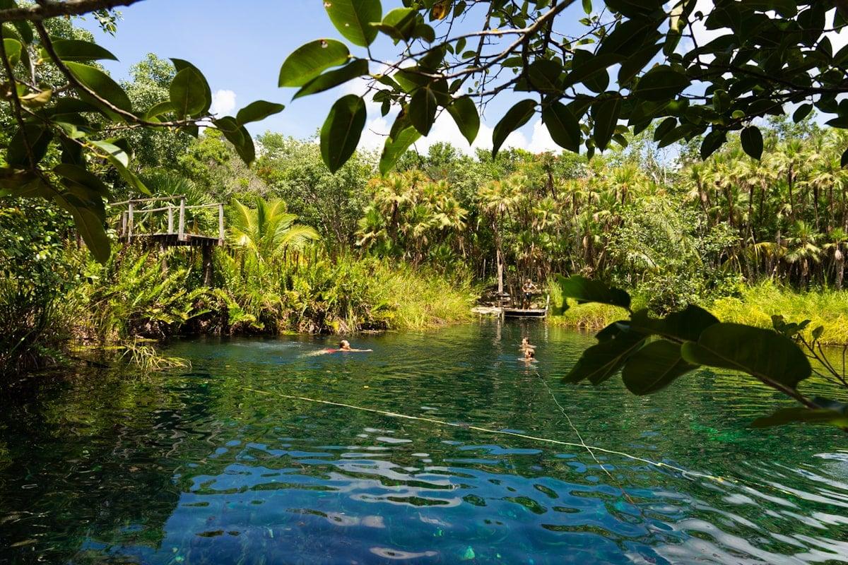 kids swimming in cenote cristal near tulum
