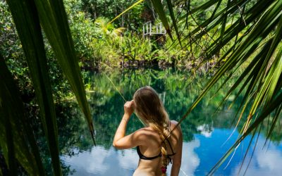 25 Epic Cenotes in & Around Tulum You MUST See