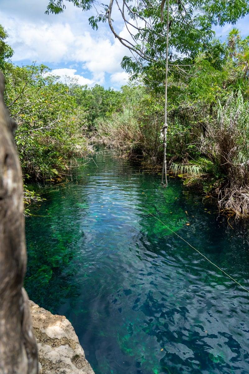 rope swing over cenote escondido in tulum