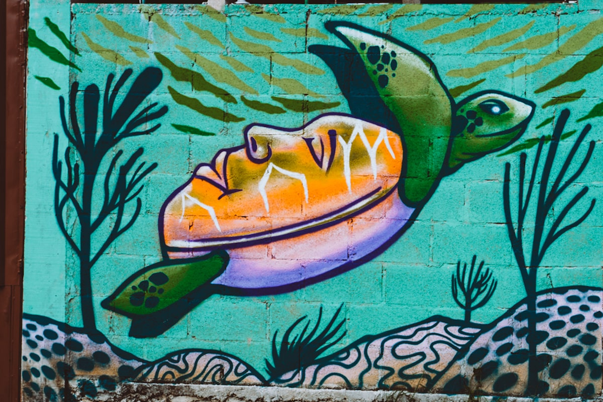 face shell turtle mural