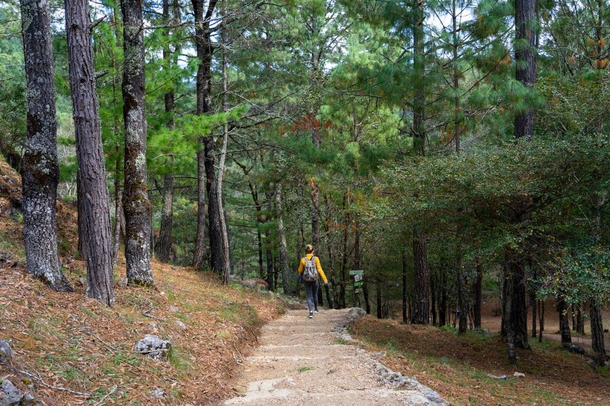 woman hiking in arcotete ecotourism park in chiapas mexico