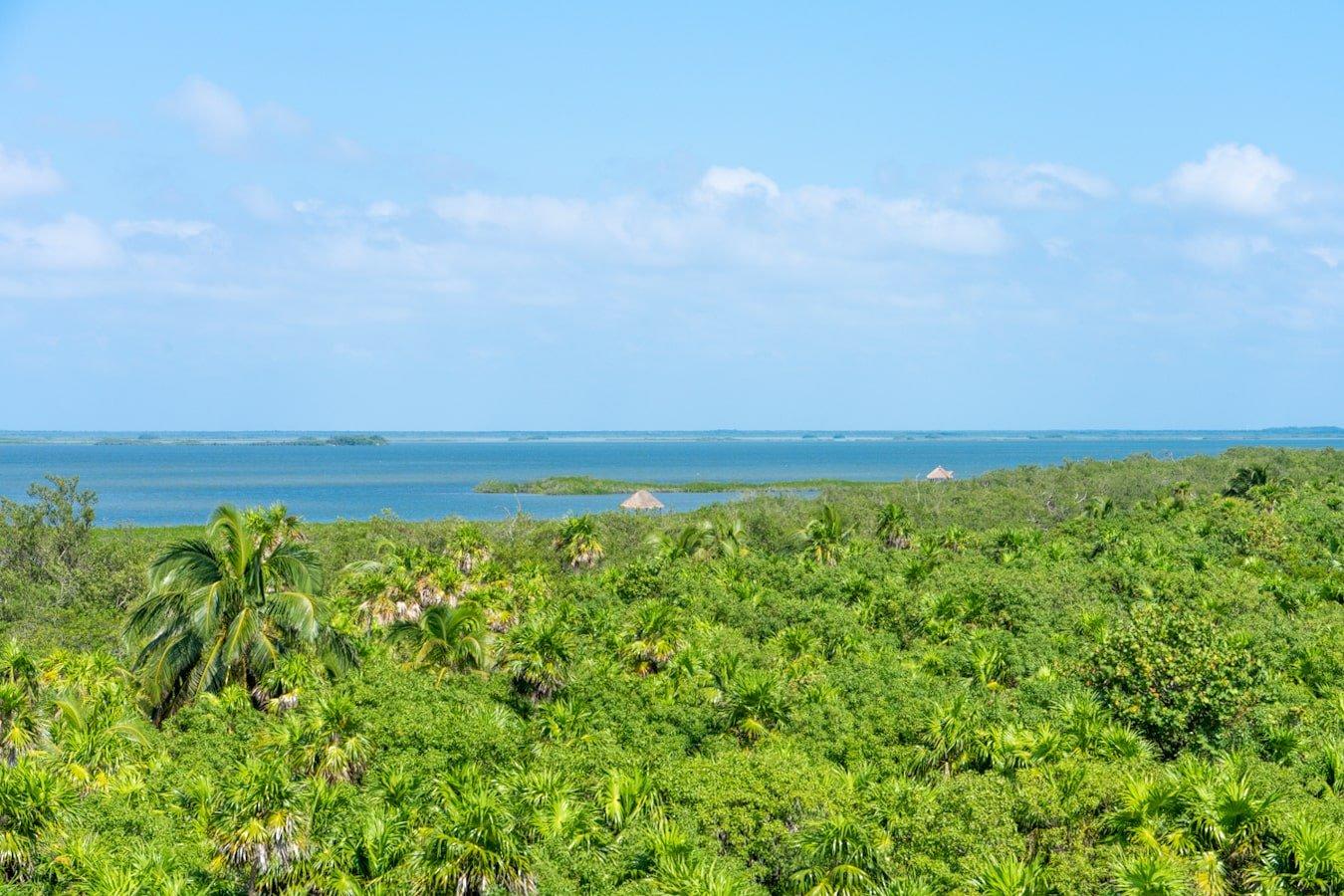 jungle and sian ka'an lagoon in the riviera maya