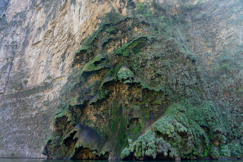 Christmas Tree Waterfall on canyon wall inside Sumidero Canyon