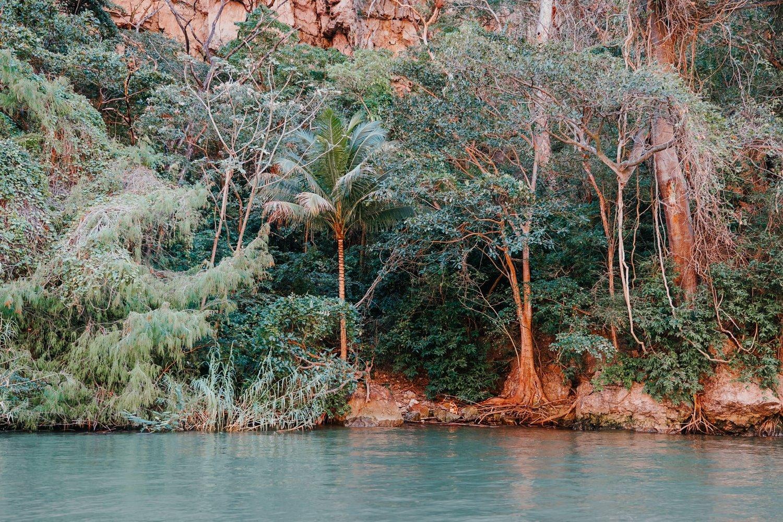 sumidero canyon riverbank