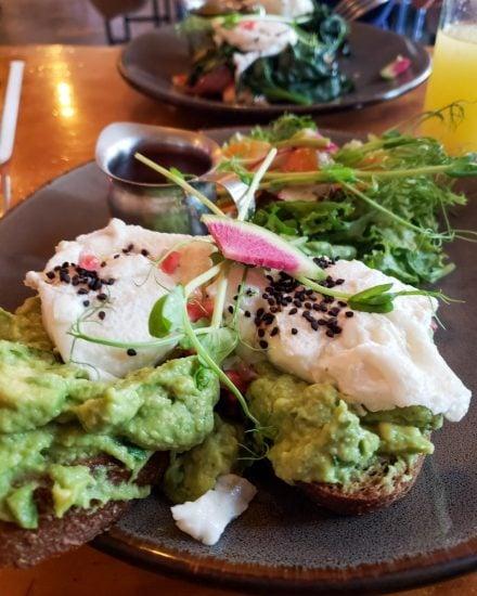 avocado toast at Del Cielo Tropical Cafe in Tulum Mexico