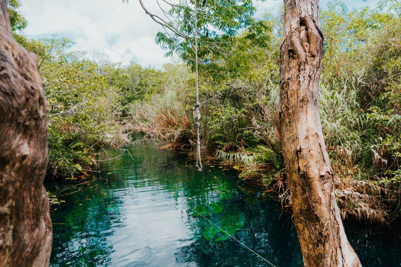 swing rope at cenote escondido