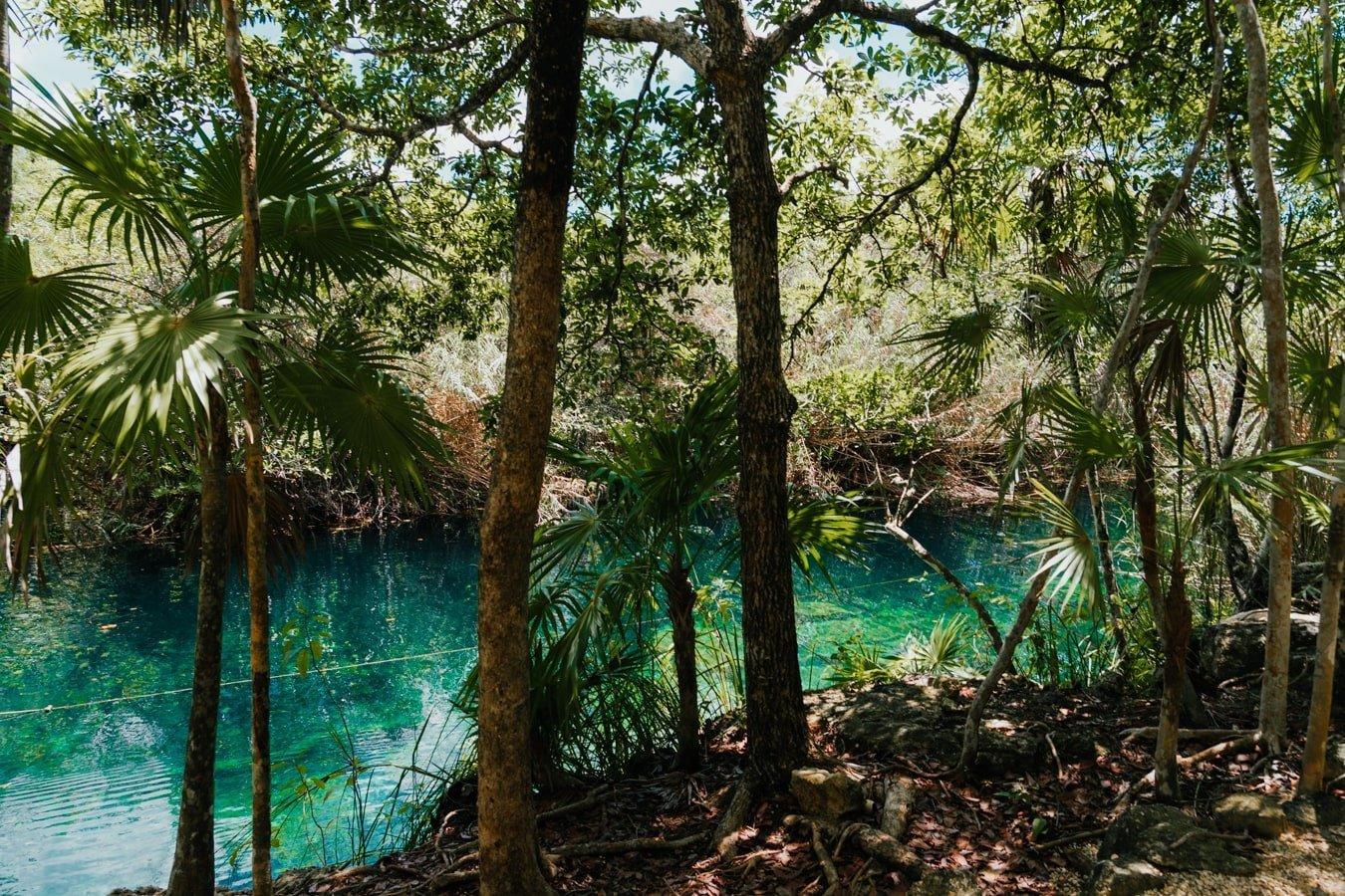 blue water of cenote escondido
